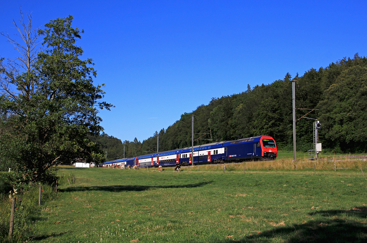http://www.badische-schwarzwaldbahn.de/DSO/B665.jpg