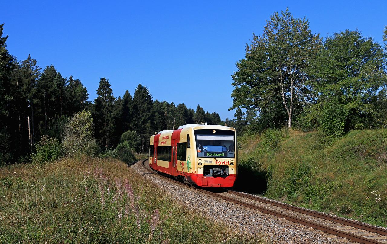 http://www.badische-schwarzwaldbahn.de/DSO/B916.jpg