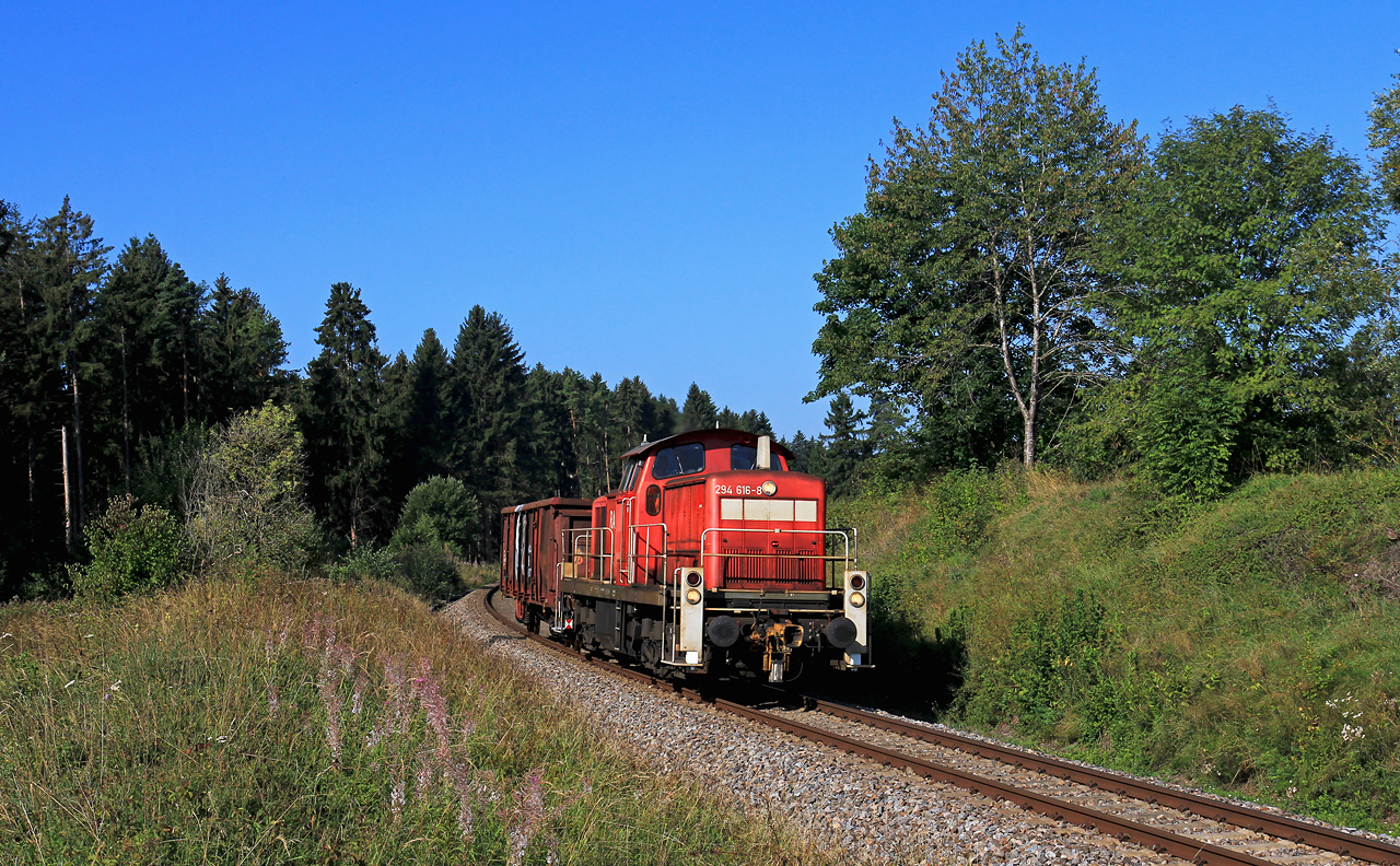 http://www.badische-schwarzwaldbahn.de/DSO/B917.jpg