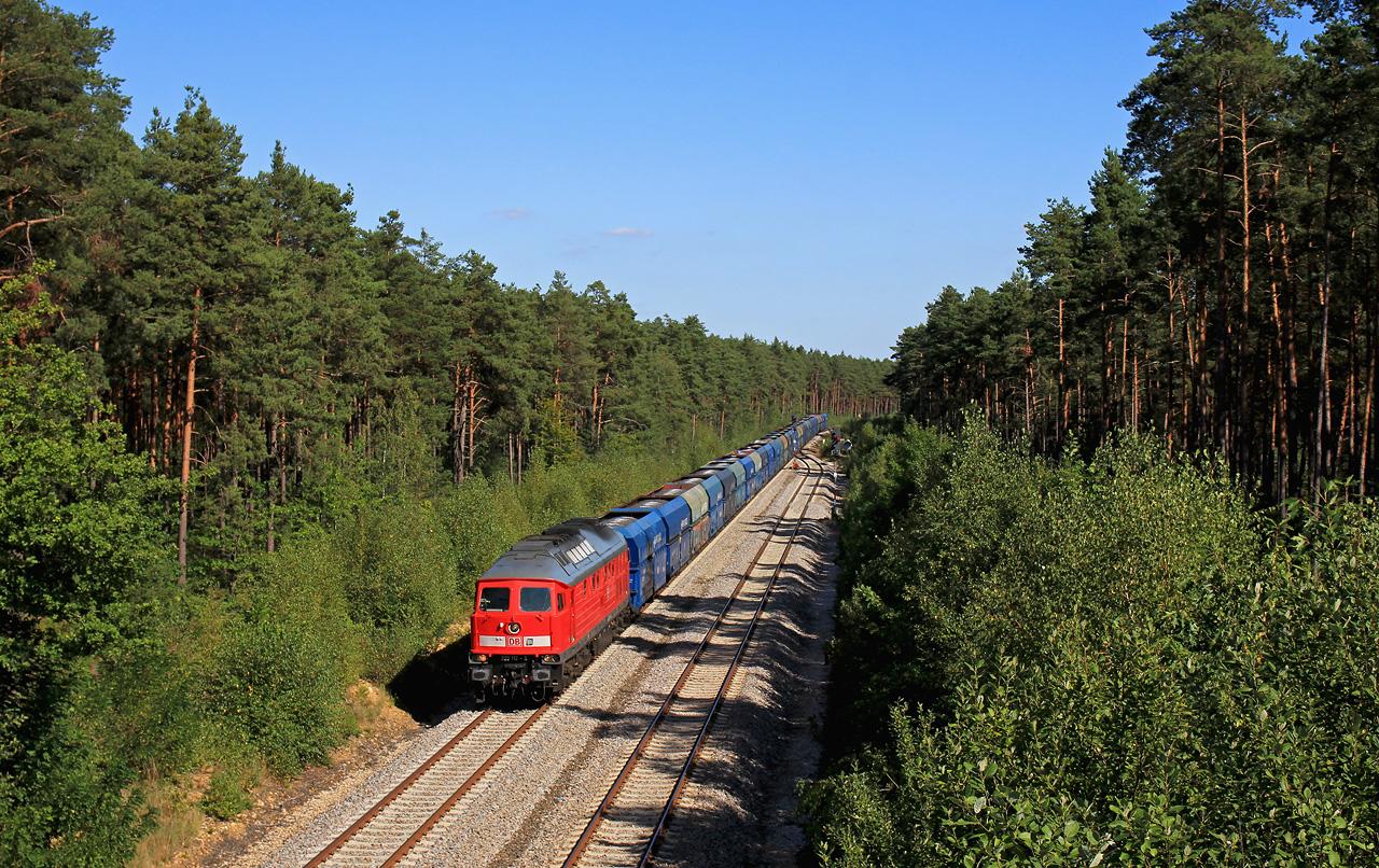 http://www.badische-schwarzwaldbahn.de/DSO/G103.jpg