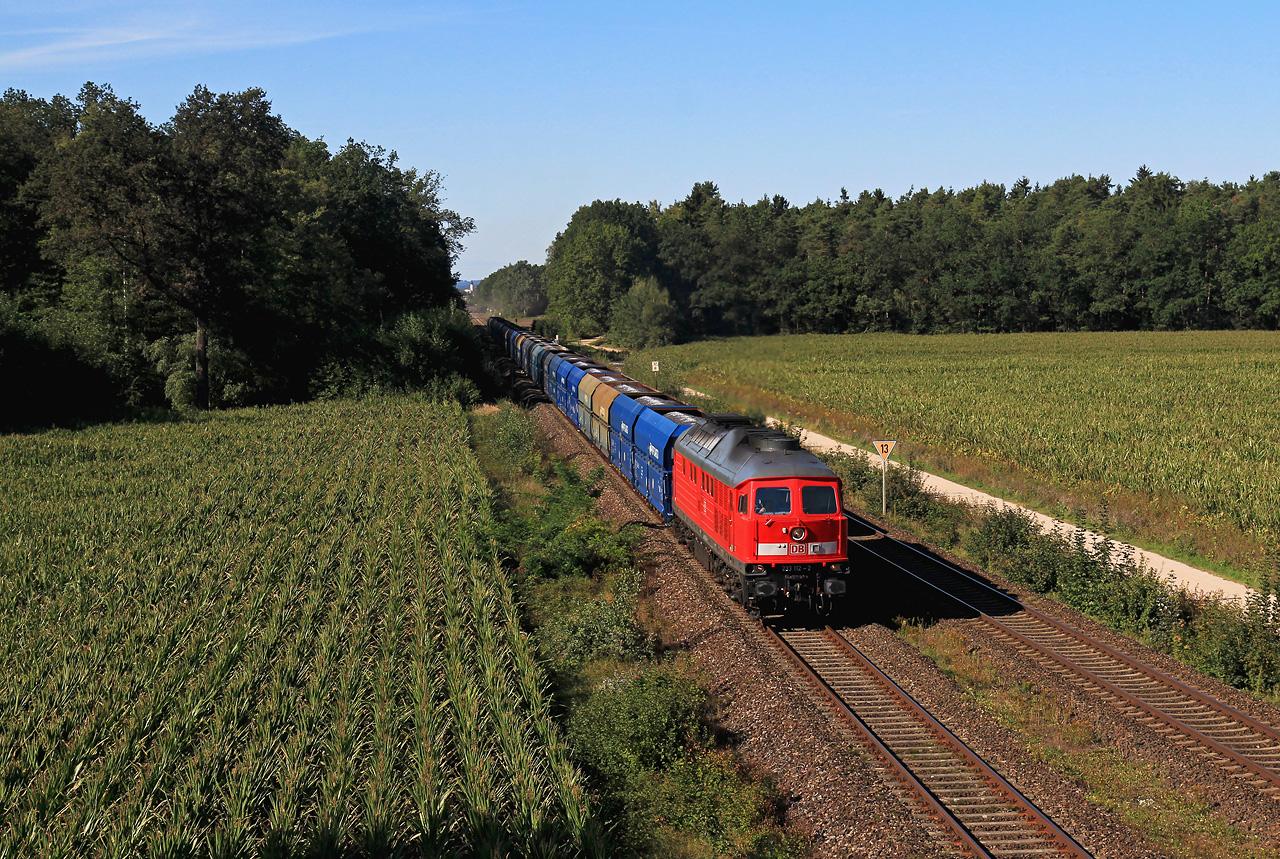 http://www.badische-schwarzwaldbahn.de/DSO/G105.jpg