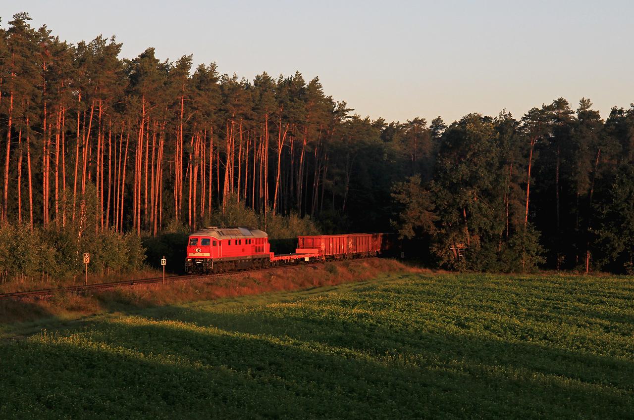 http://www.badische-schwarzwaldbahn.de/DSO/G110.jpg