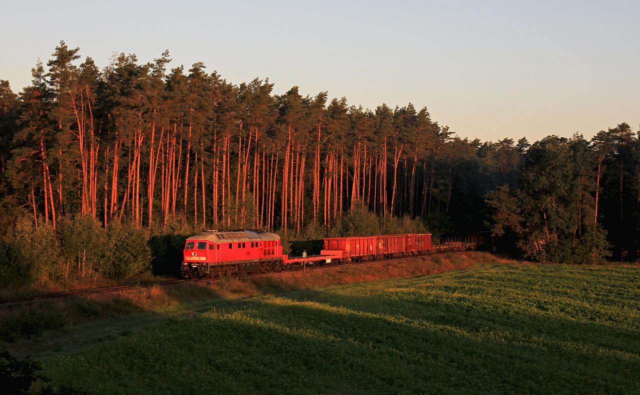 http://www.badische-schwarzwaldbahn.de/DSO/G111.jpg
