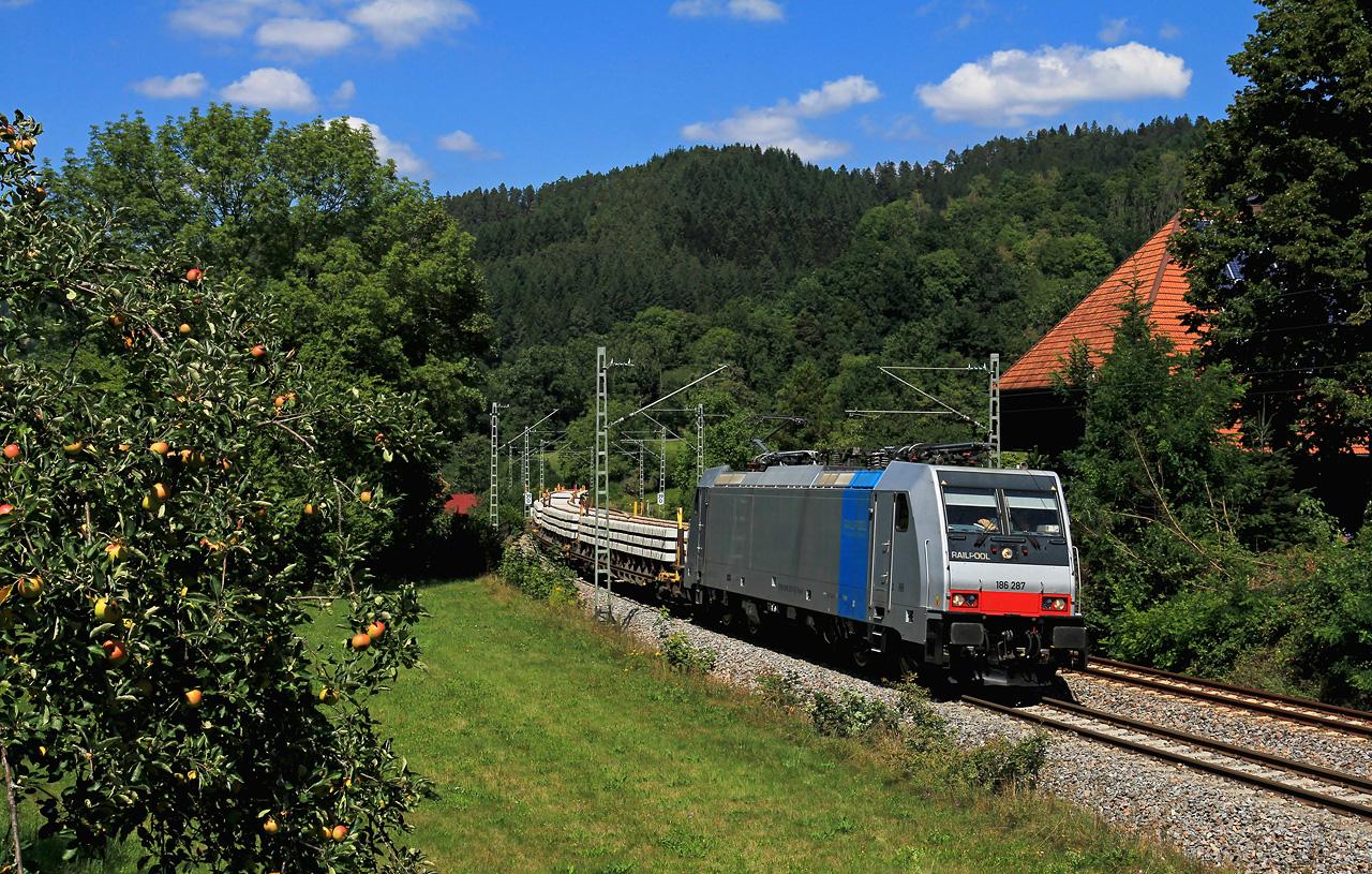 http://www.badische-schwarzwaldbahn.de/DSO/G302.jpg
