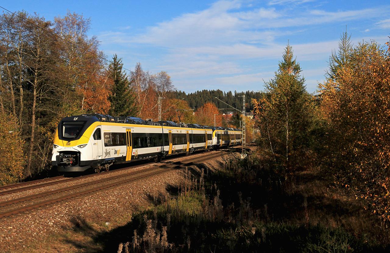 http://www.badische-schwarzwaldbahn.de/DSO/G511.jpg