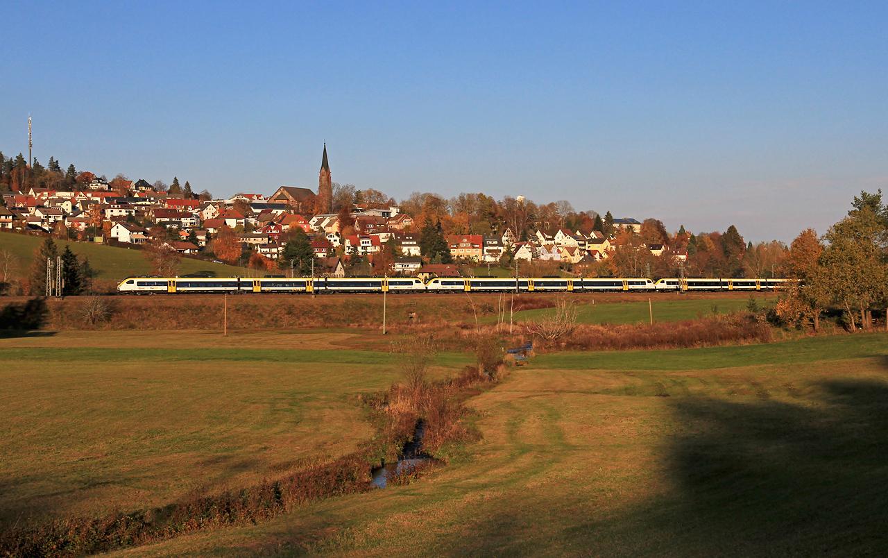 http://www.badische-schwarzwaldbahn.de/DSO/G512.jpg