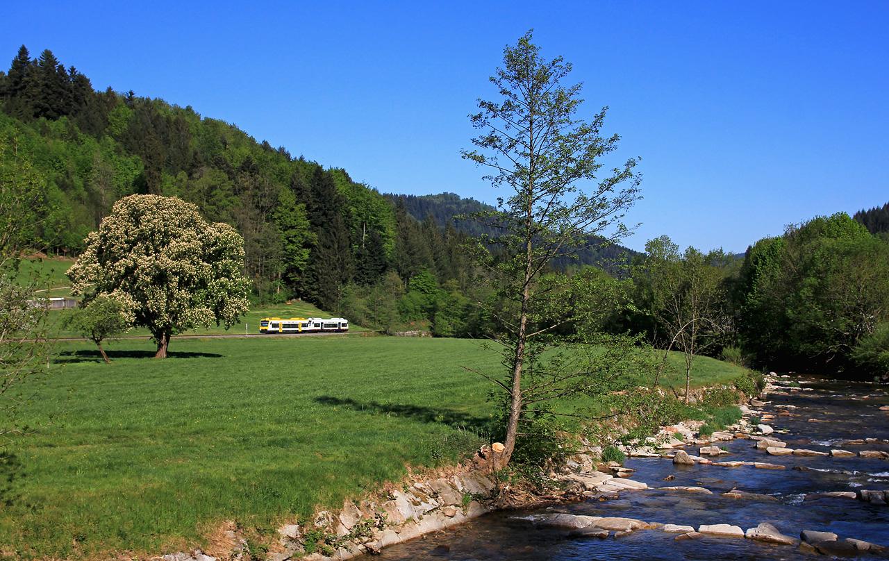http://www.badische-schwarzwaldbahn.de/DSO/G61.jpg