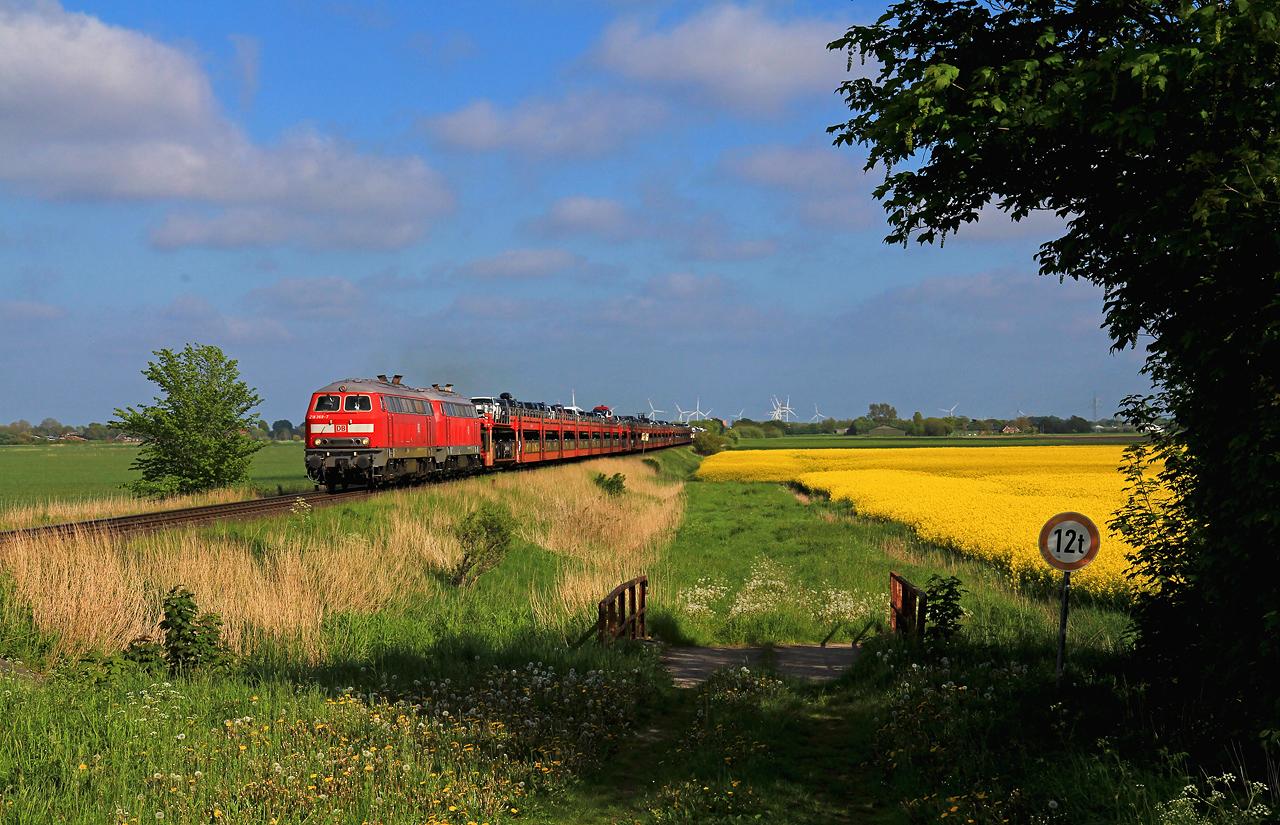 http://www.badische-schwarzwaldbahn.de/DSO/H100.jpg
