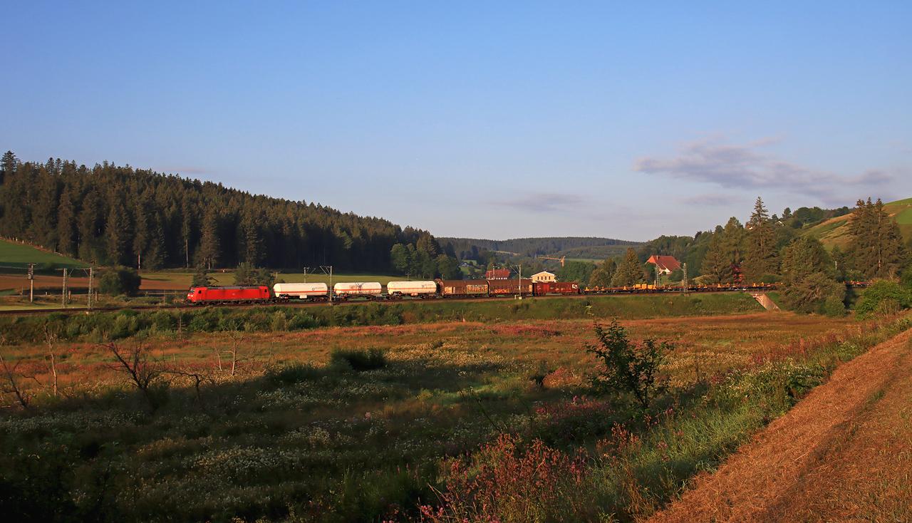 http://www.badische-schwarzwaldbahn.de/DSO/H231.jpg